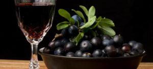 Домашнее вино из терносливы с оригинальным и насыщенным вкусом