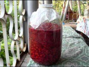 Вино из малины с опьяняющим ароматом в домашних условиях: простой рецепт