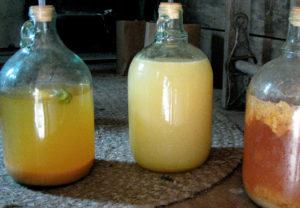 Домашнее яблочное вино: простой рецепт изысканного напитка
