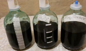 Черничное вино в домашних условиях: простой рецепт